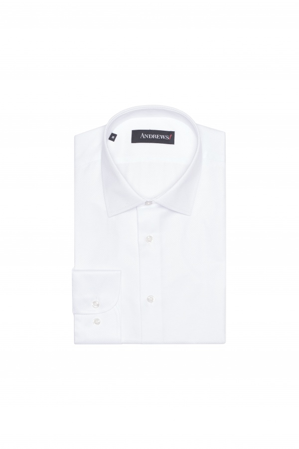 Shirts Business Regular